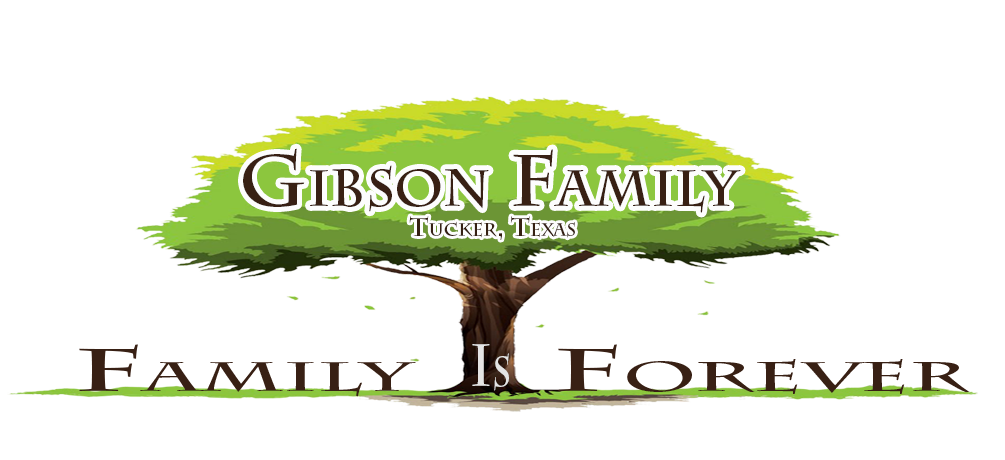1005x460 Family Reunions Gibson Family