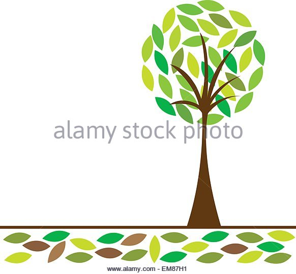 582x540 Family Tree Picture Vector Background Stock Photos Amp Family Tree