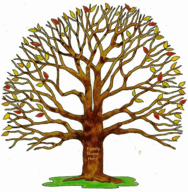 600x613 With Brown Trunk Family Tree Clipart, Explore Pictures