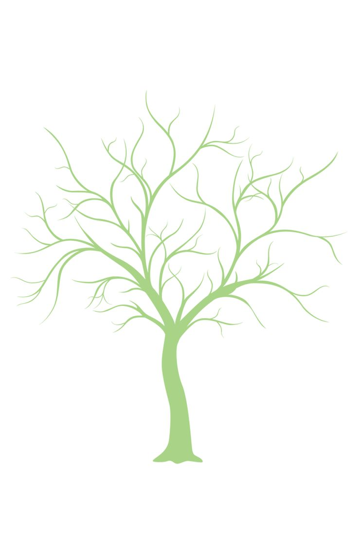736x1137 Artistically Drawn Old Tree Outline On A White Background Tattoo