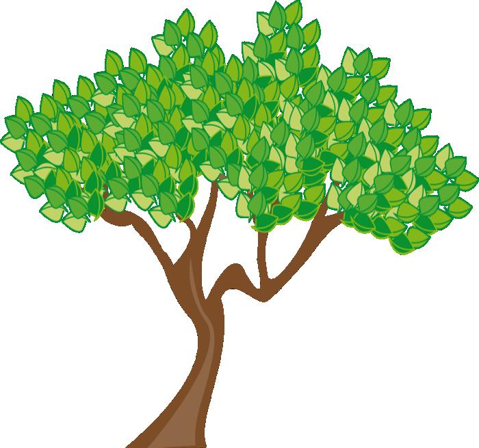 700x655 Family Tree Clipart