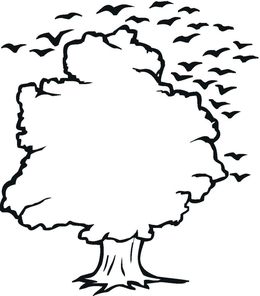 863x983 Outline Of A Tree Library Simple Clip Art Bare Family Simple Tree