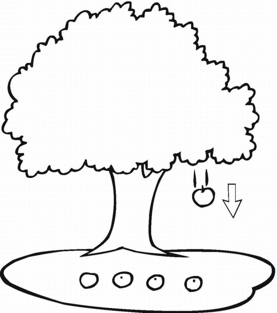 940x1062 Color Clipart Tree