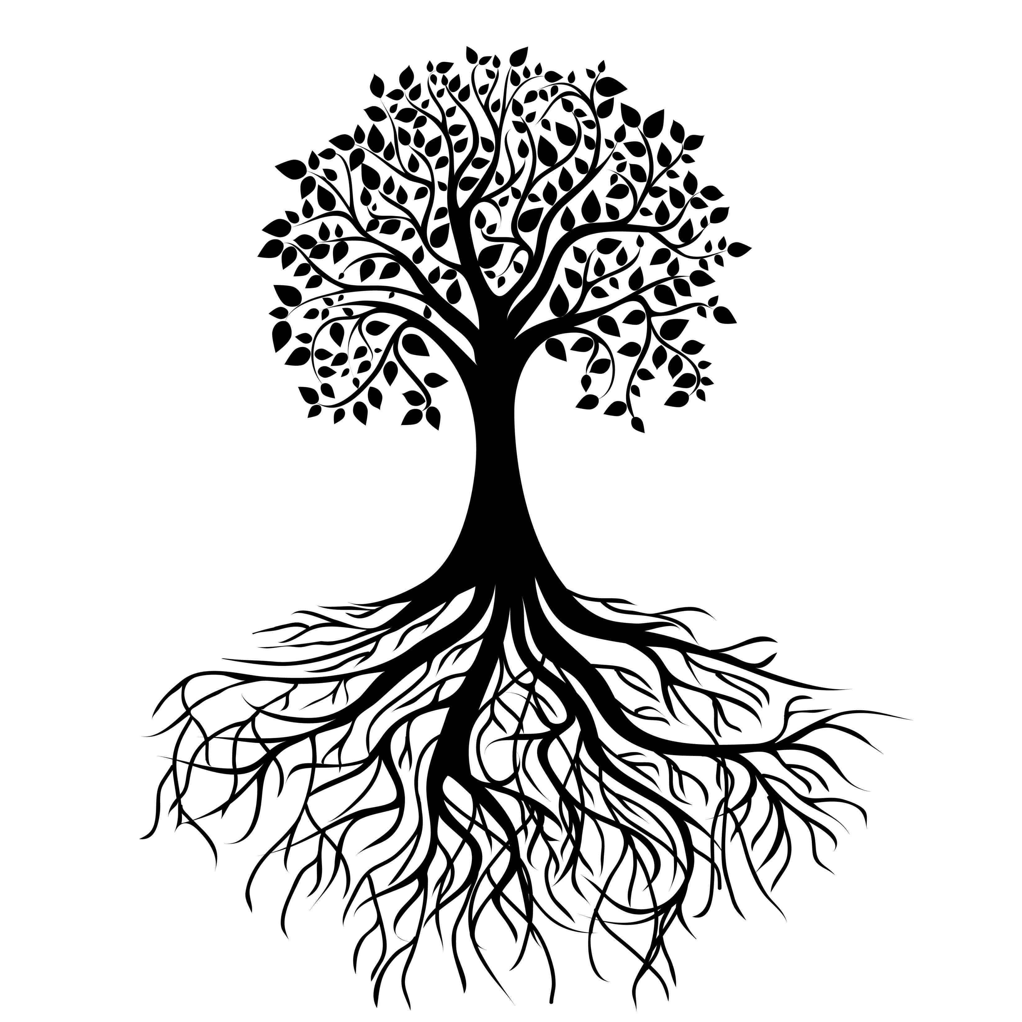 3292x3292 Roots Clipart Black And White