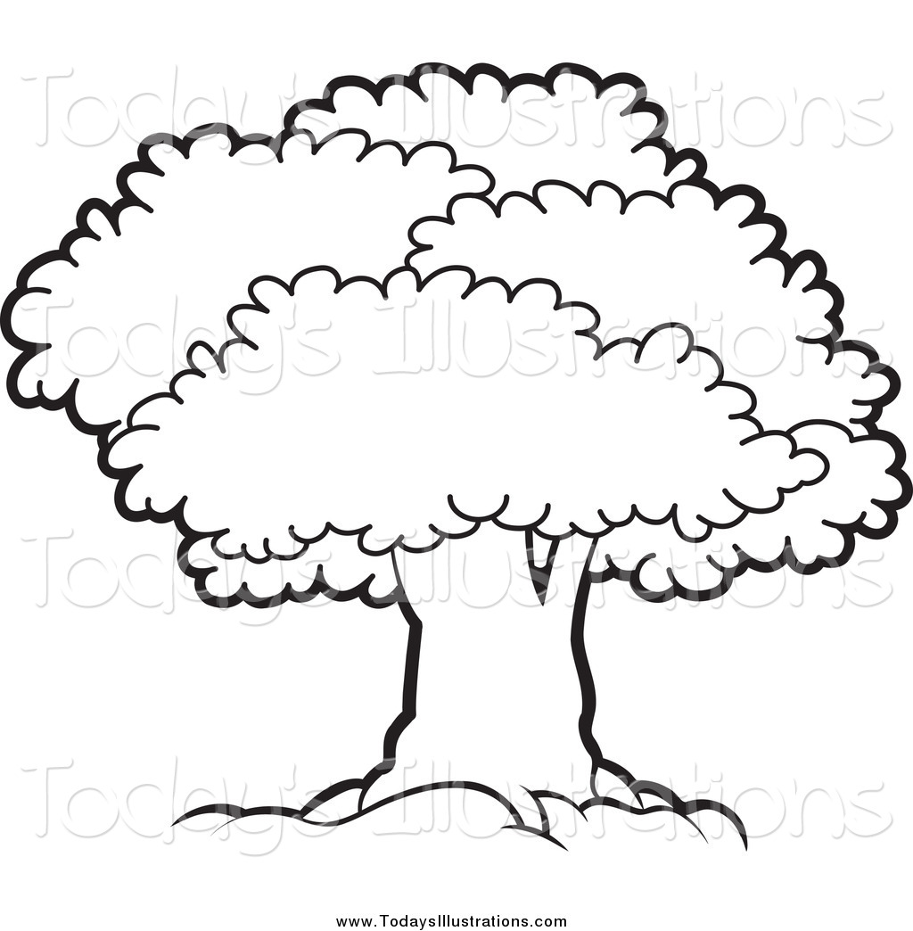 1024x1044 Tree Black And White Clipart