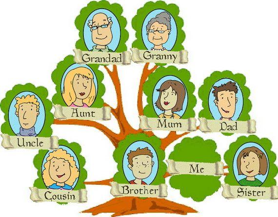 570x446 Family Tree Dreams Meaning