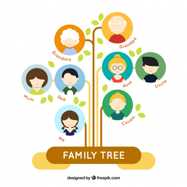 626x626 Fantastic Flat Family Tree With Colored Circles Vector Free Download