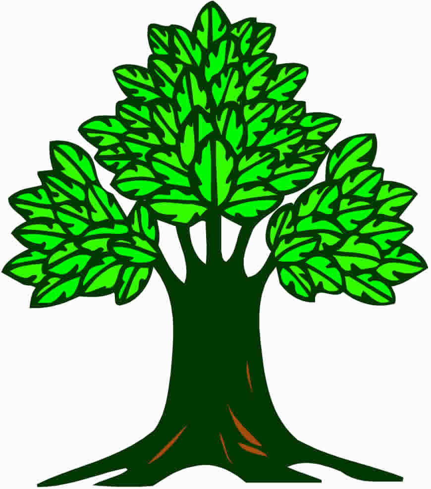 870x987 Our Family Genealogy Pages Merriam Family Tree