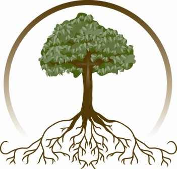 351x336 Roots Clipart Family Tree