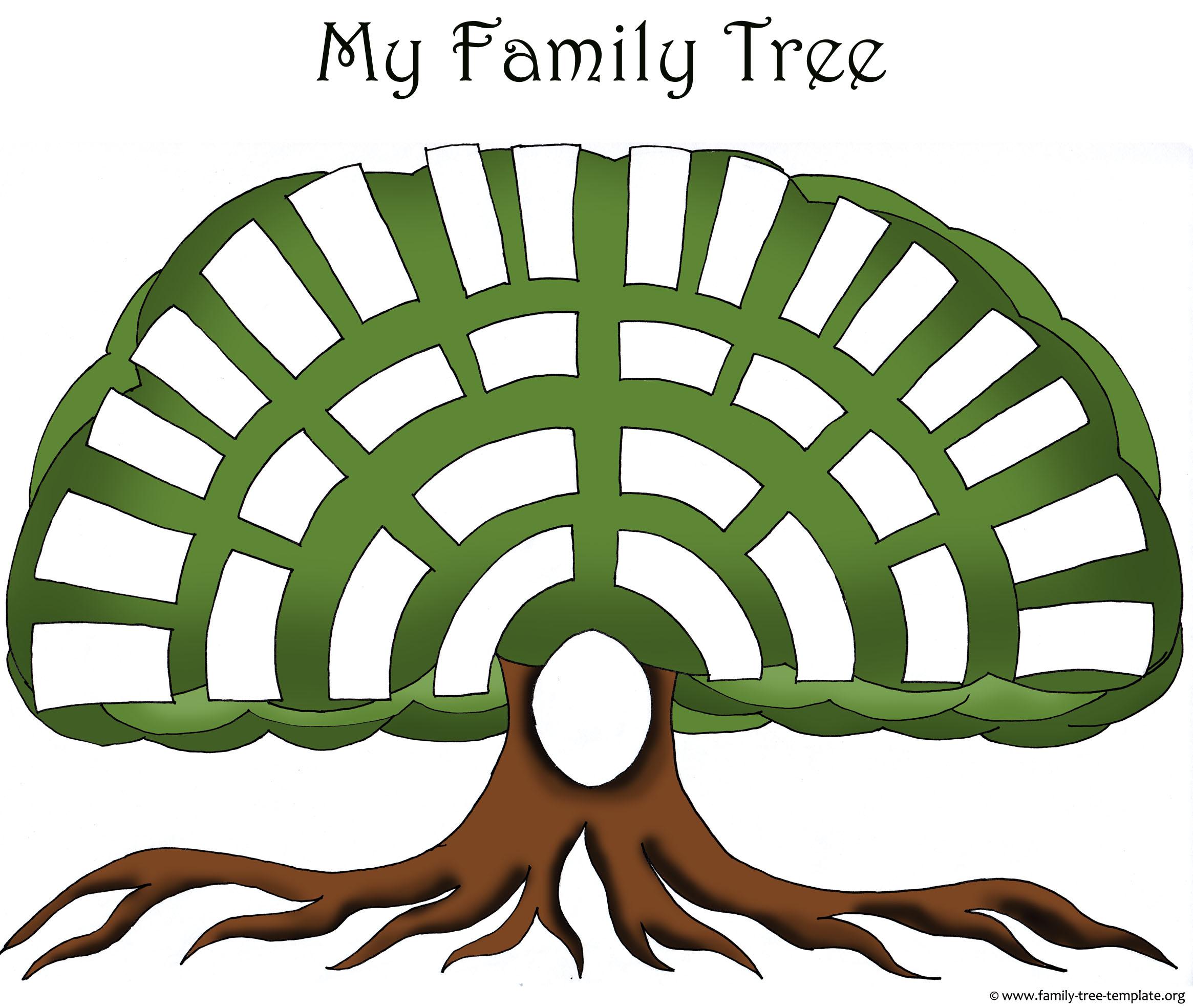 2330x1969 Blank Family Tree Clipart
