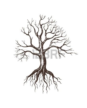 362x450 Best Tree With Roots Drawing Ideas Nature