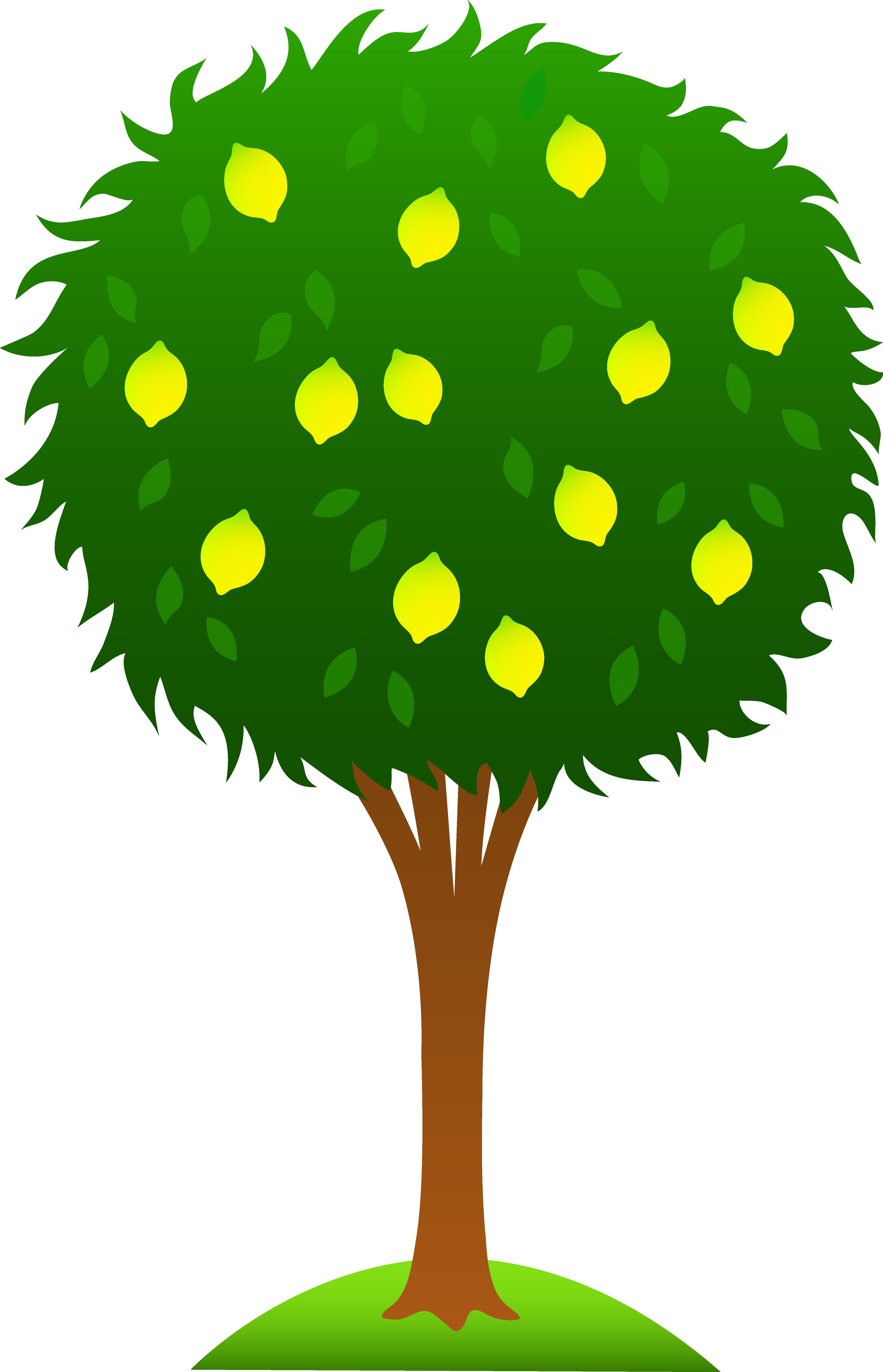 4325x6720 Cartoon Tree Clipart