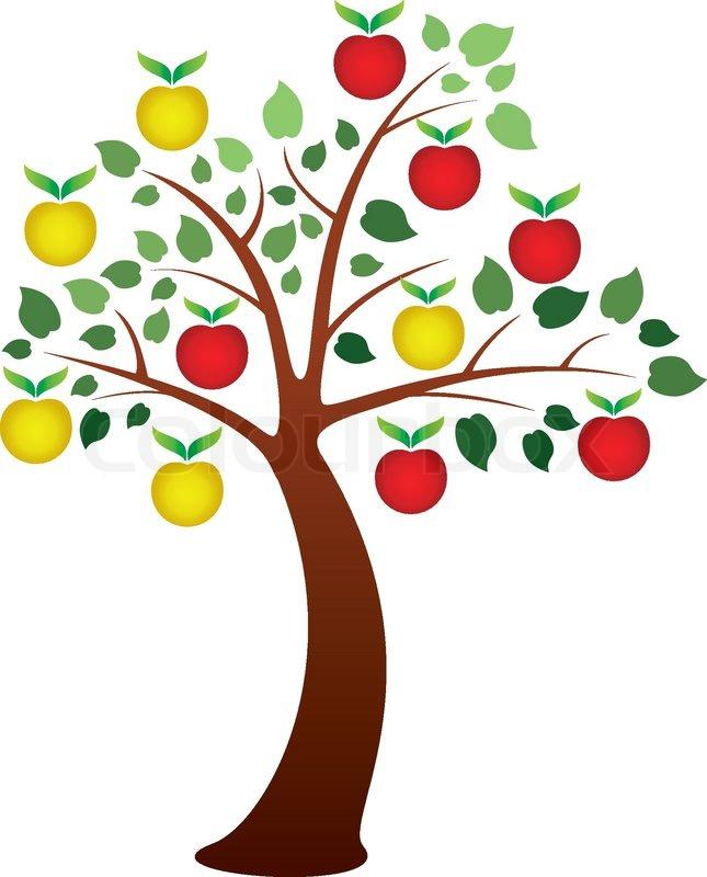 645x800 Drawn Roots Fruit Tree