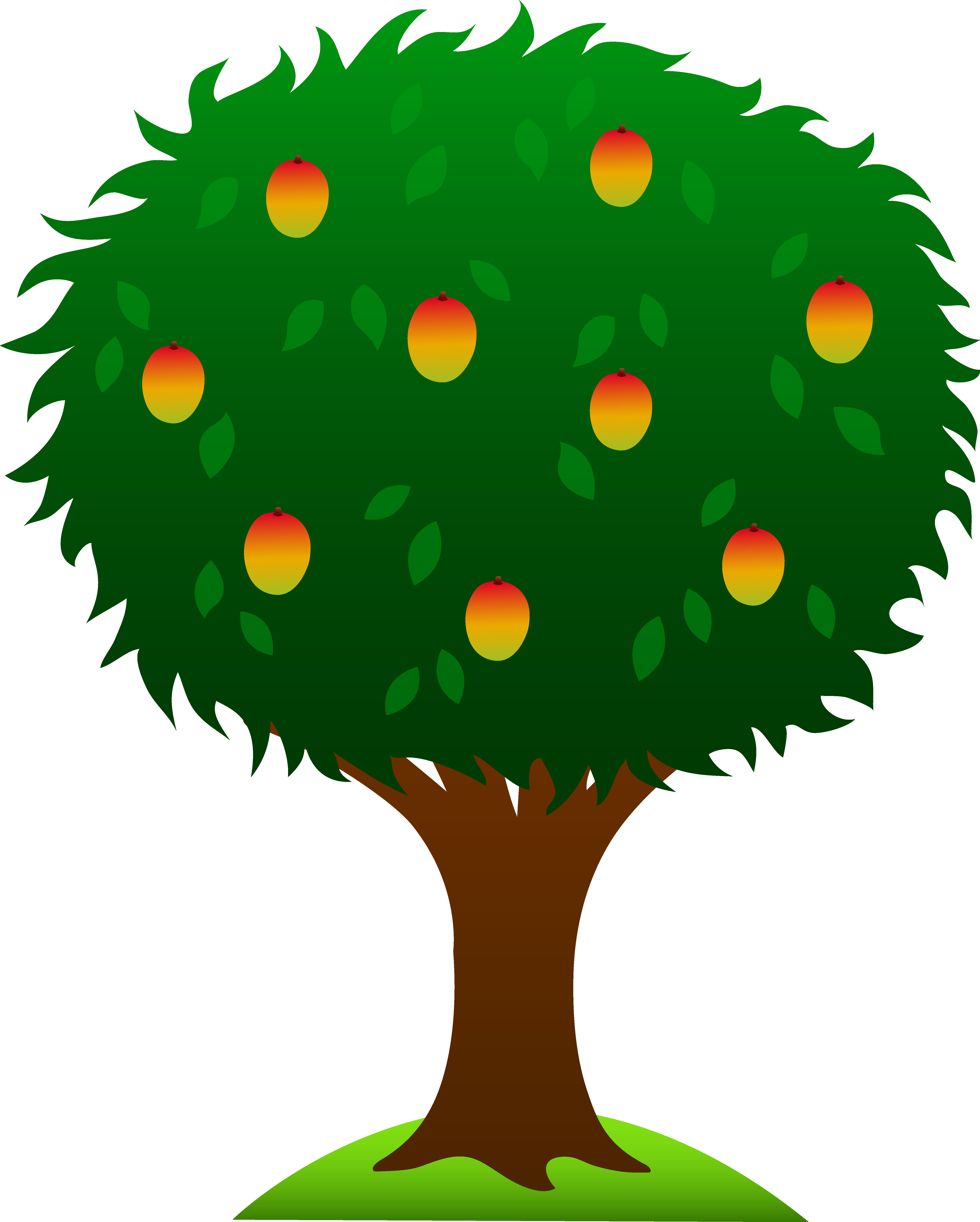 5178x6456 Mango Tree With Roots Clipart