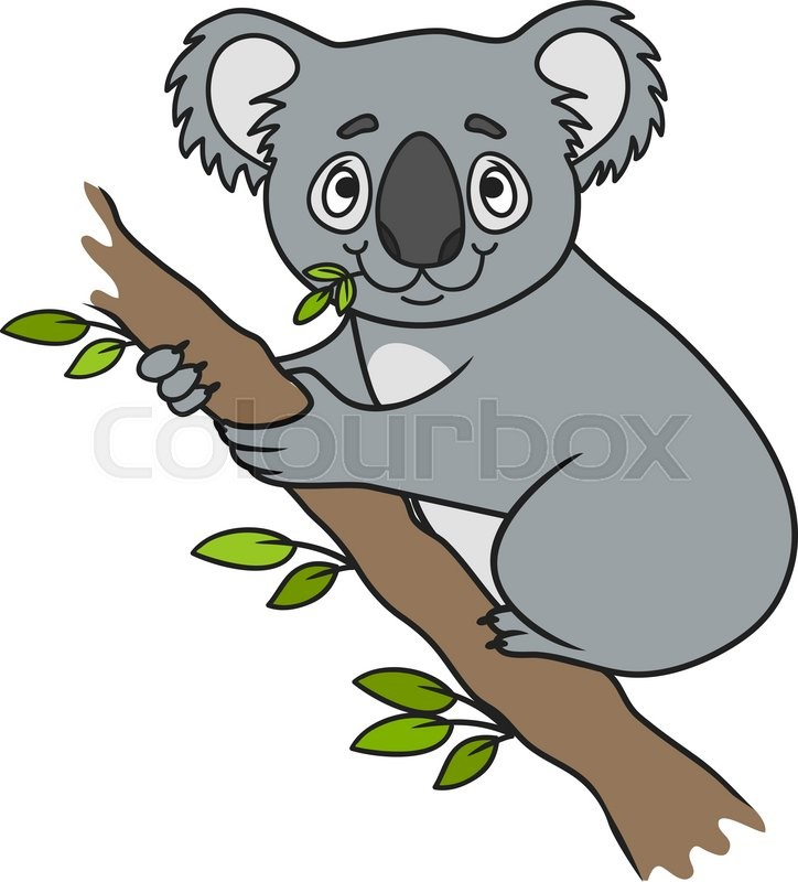 724x800 Cartoon Koala. Vector Clip Art. Farm Animals. Animal