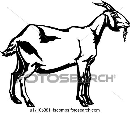 450x391 Clipart Of , Animal, Farm, Goat, U17105381