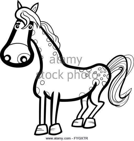 511x540 Farm Animal Black And White Stock Photos Amp Images