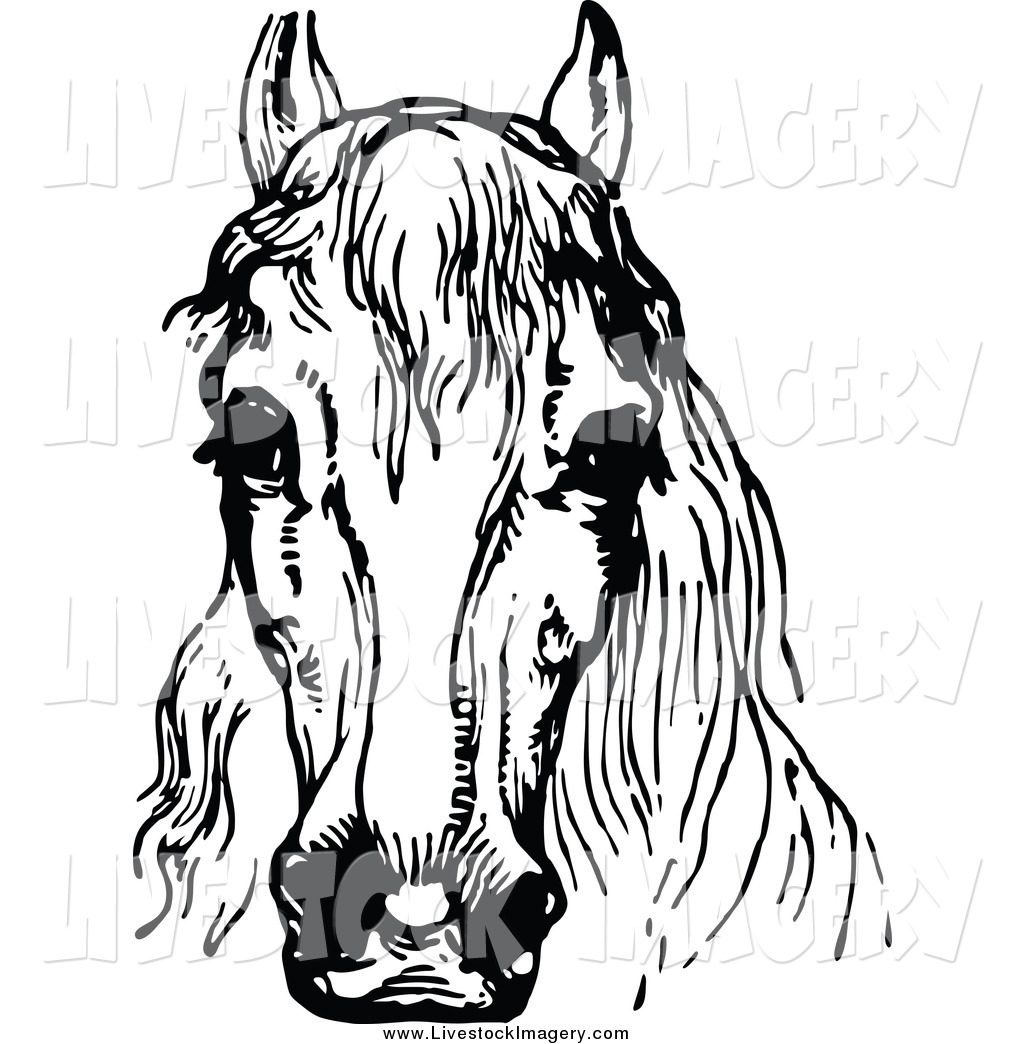 1024x1044 Clip Art Of A Black And White Horse Head By Prawny Vintage