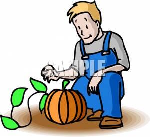 300x273 Farmer Kneeling To Pick A Pumpkin Clipart Image