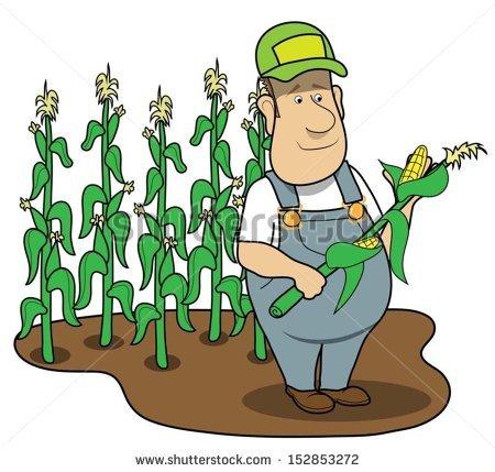 450x429 Corn Clipart Corn Farm