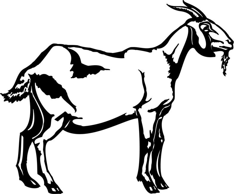 784x648 Goat Clipart Black And White