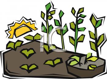 350x258 Royalty Free Plant Clip Art, Farming Clipart