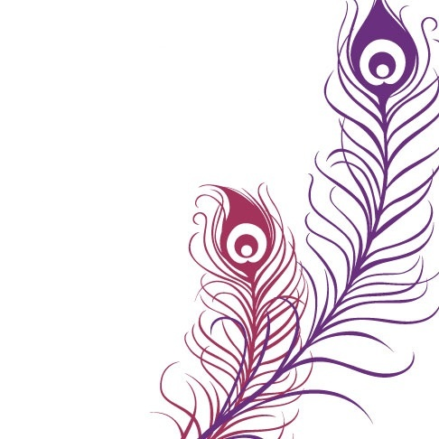 Feather Outline Clipart