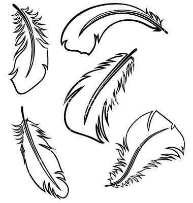 380x400 Feather Clipart Feather Outline