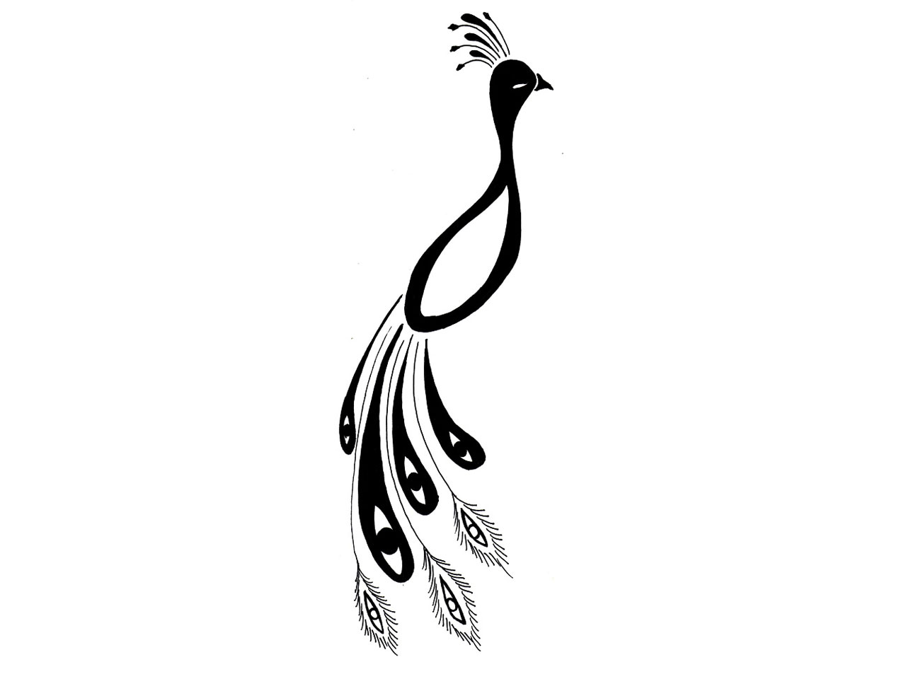 1280x960 Peacock Basic Feather Outline Clipart Clipart Kid Image
