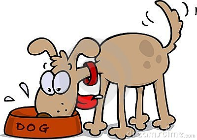 400x284 Pets Clipart Feed Dog