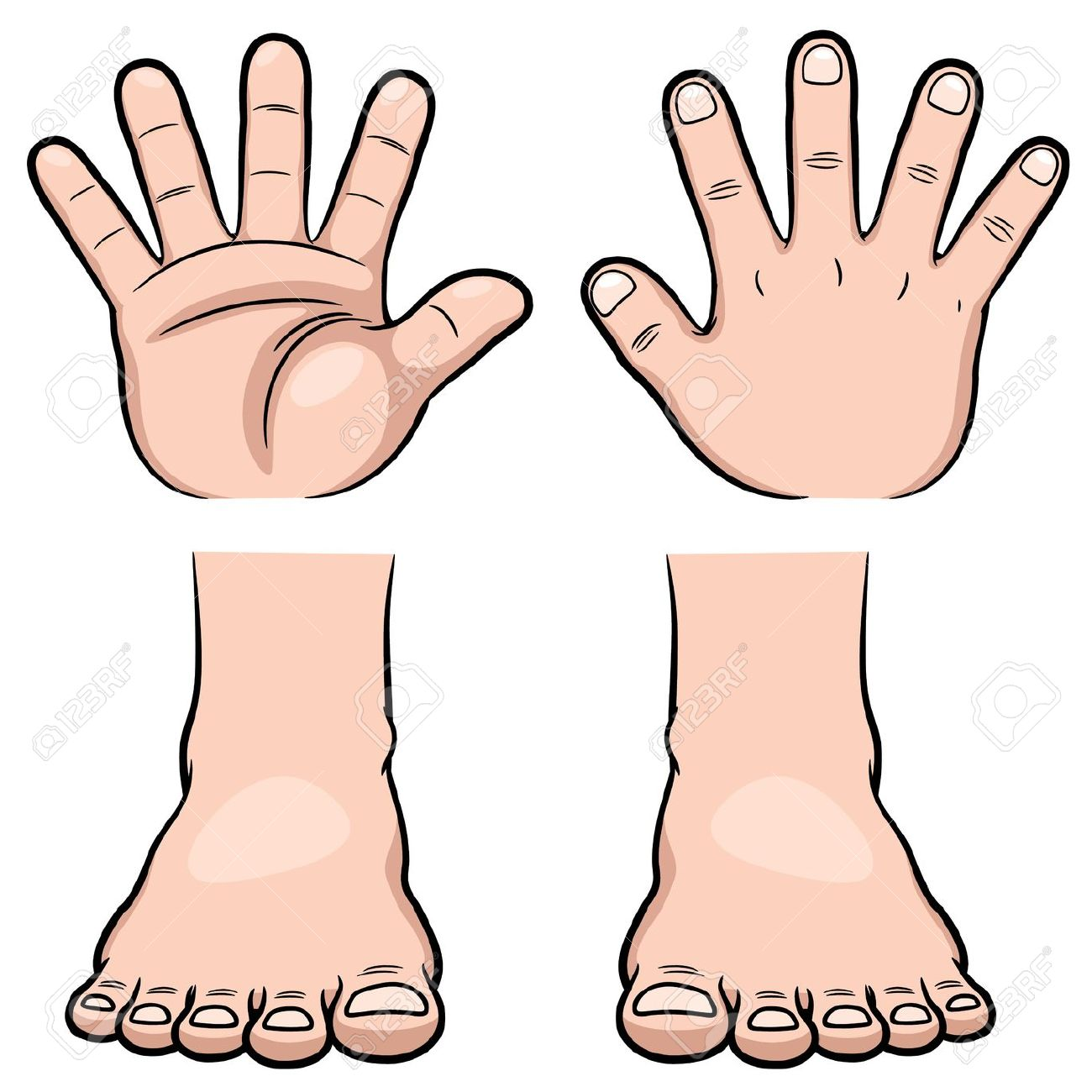 1300x1300 Feet Clipart Hand Foot