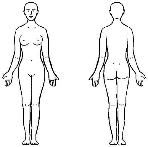 500x495 Female Body Outline Costume Design Female Bodies
