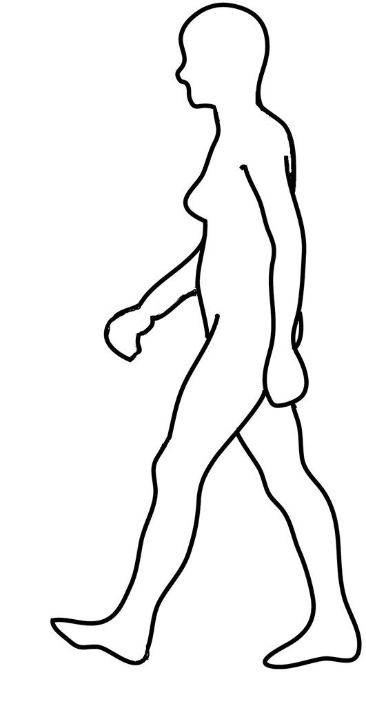 Female Body Outline