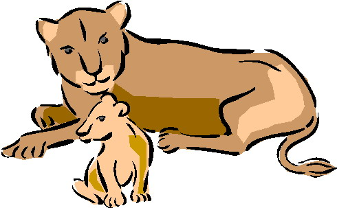 490x303 Lioness Clipart Female Lion