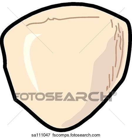 450x470 Stock Illustration Anterior View Skeletal Anatomy