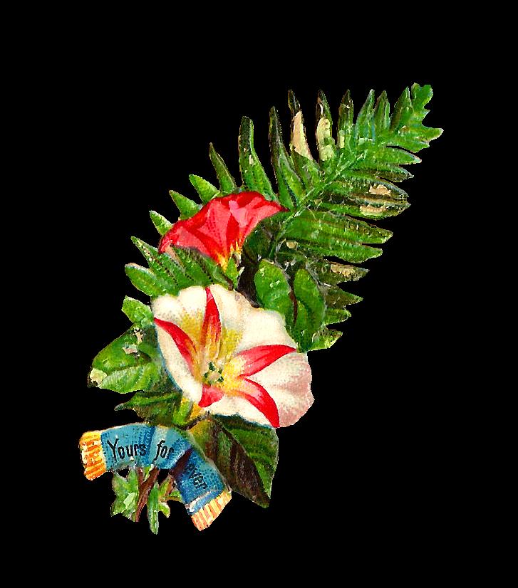 727x826 Antique Images Free Flower Clip Art Graphic Of Flower Bouquet