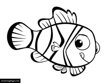 450x348 Finding Nemo Coloring Pages Printable