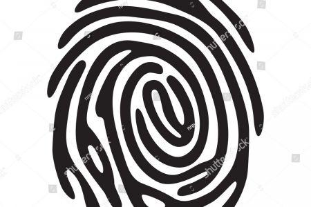 450x300 Clip Art Radial Vs Ulnar Loop Fingerprint Pattern Types Three