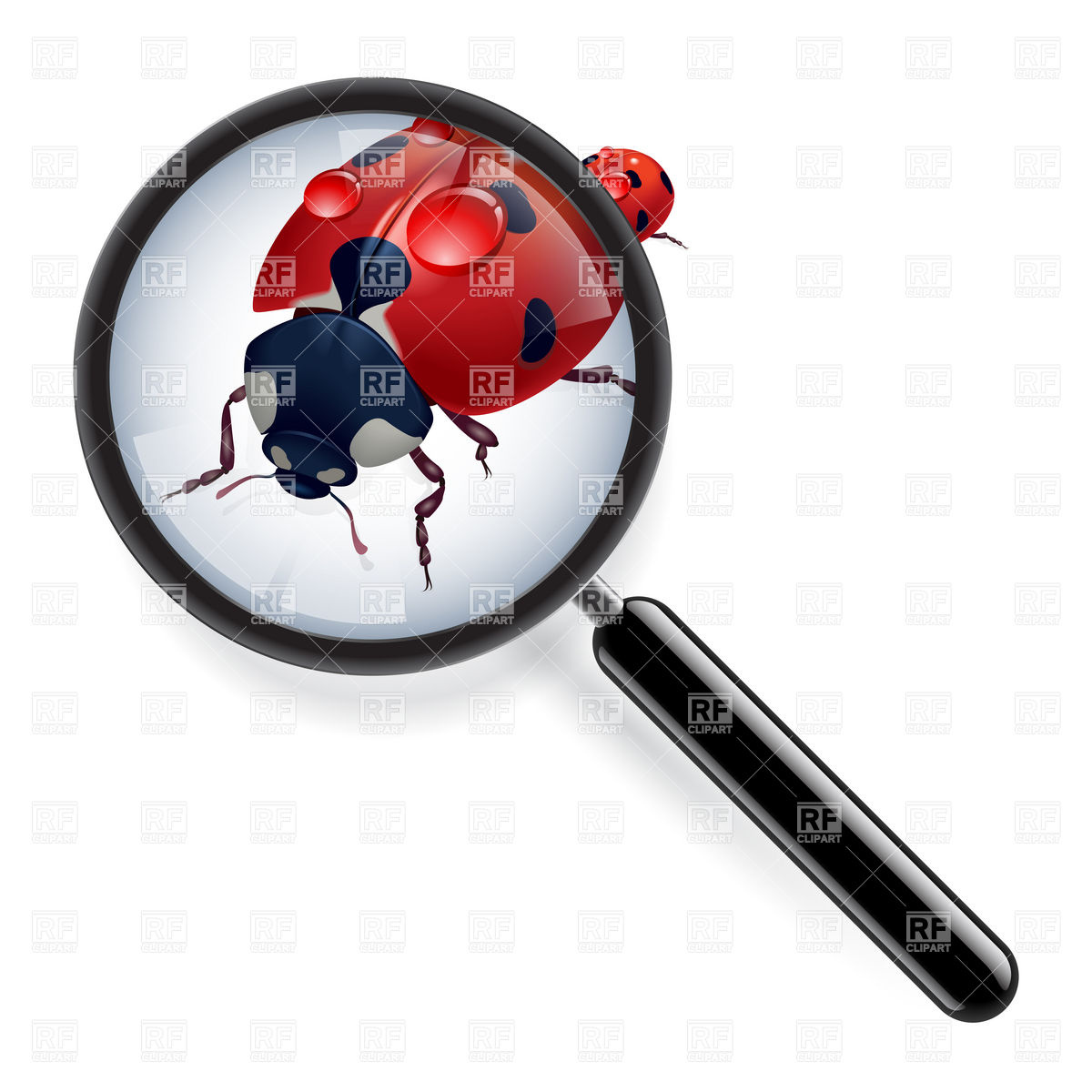 1200x1200 Magnifier With Scanned Fingerprint Royalty Free Vector Clip Art