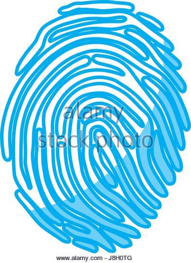 392x540 Fingerprint Macro Stock Photos Amp Fingerprint Macro Stock Images