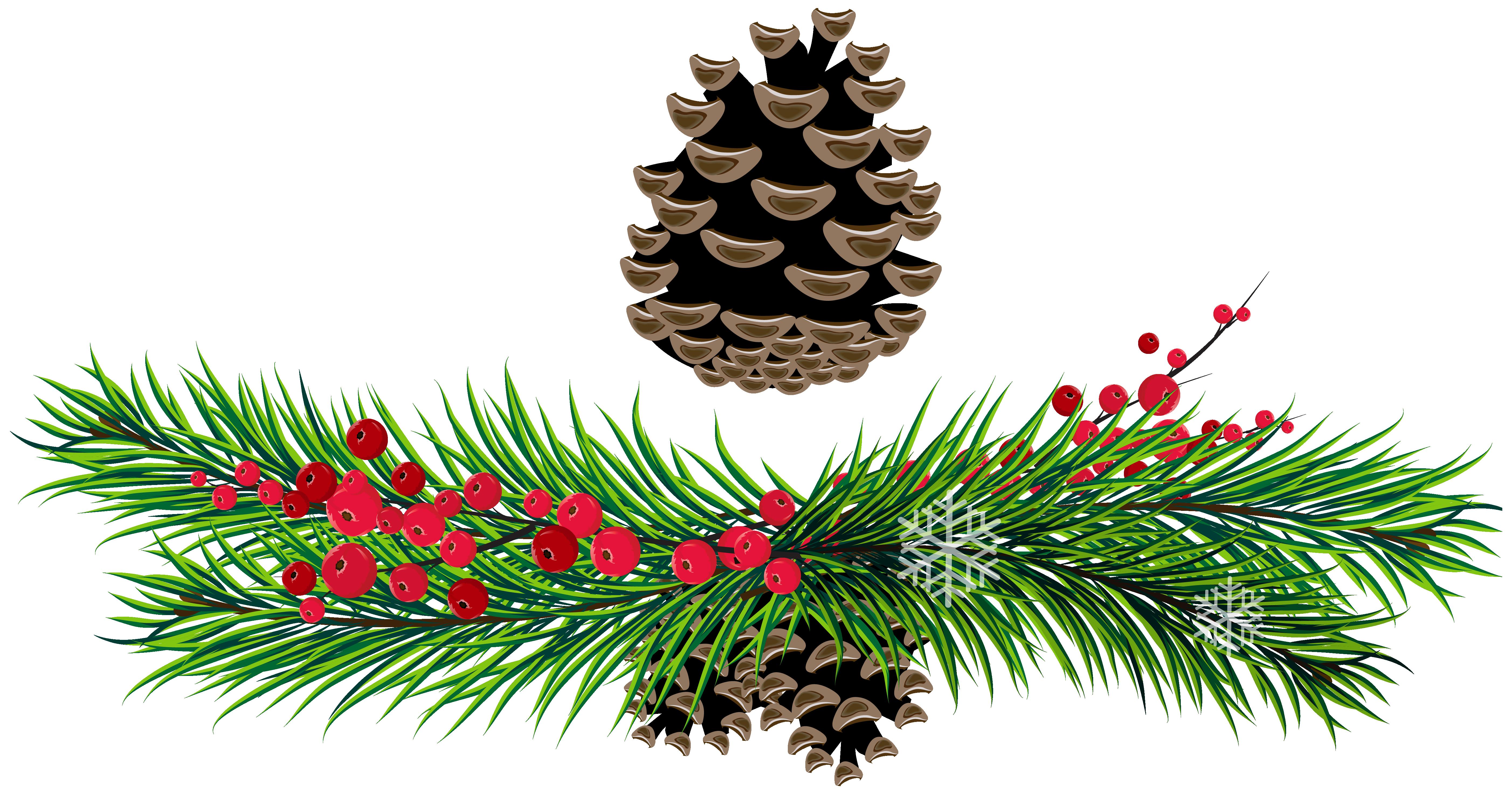 5610x2967 Fir Tree Branches Clip Art Cliparts