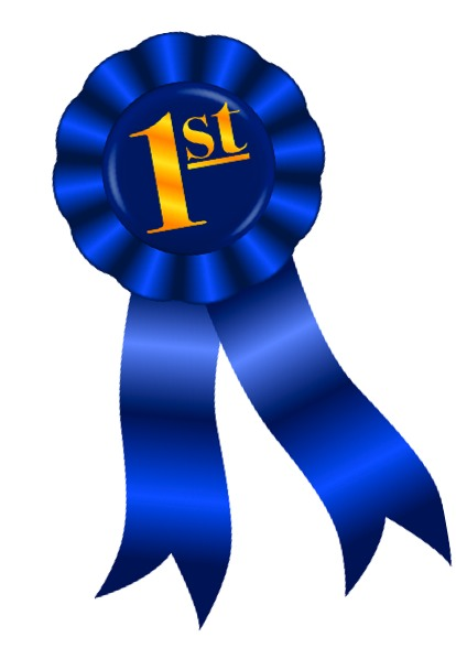 414x588 Ribbon Clipart First Place