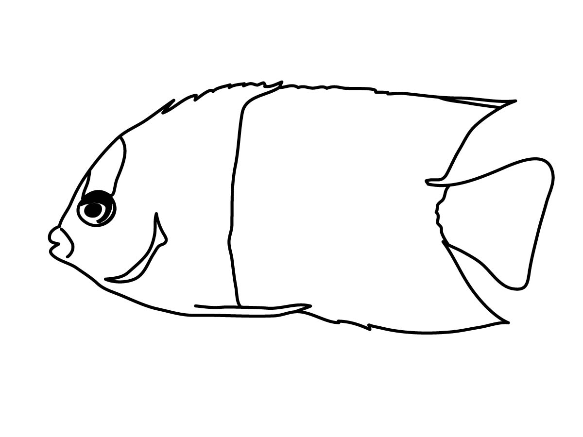 1200x900 Angelfish clipart black and white