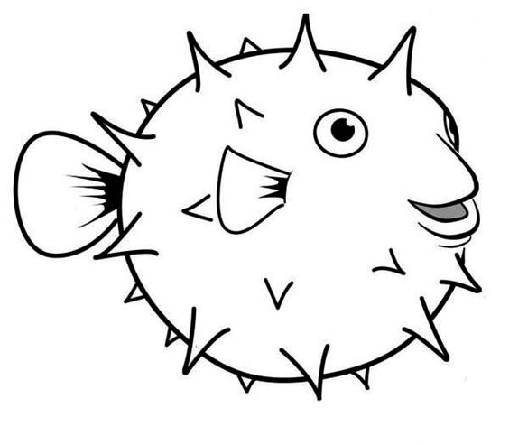 564x493 Fish black and white puffer fish clipart black and white