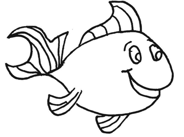 736x548 Sketch Clipart Fish