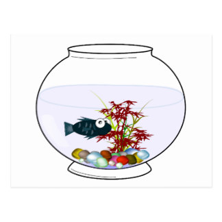 324x324 Fish Bowl Cards