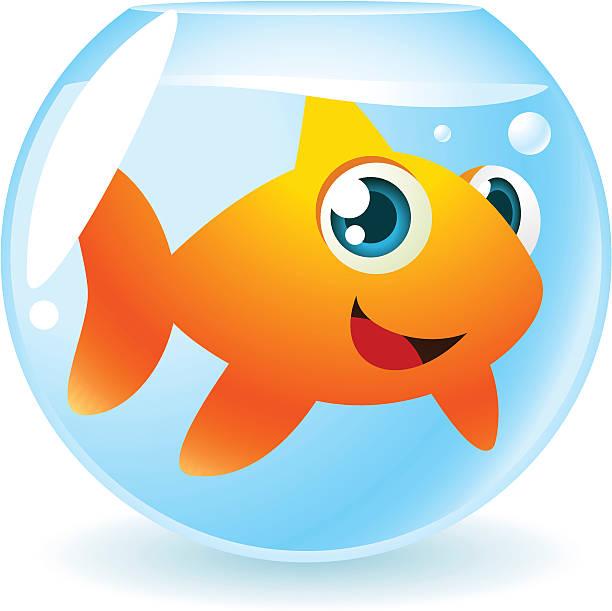612x611 Fish Bowl Clipart Big Fish