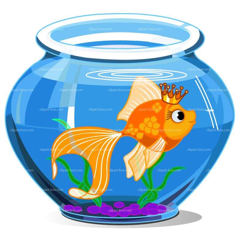 801x801 Fish Bowl clipart cute