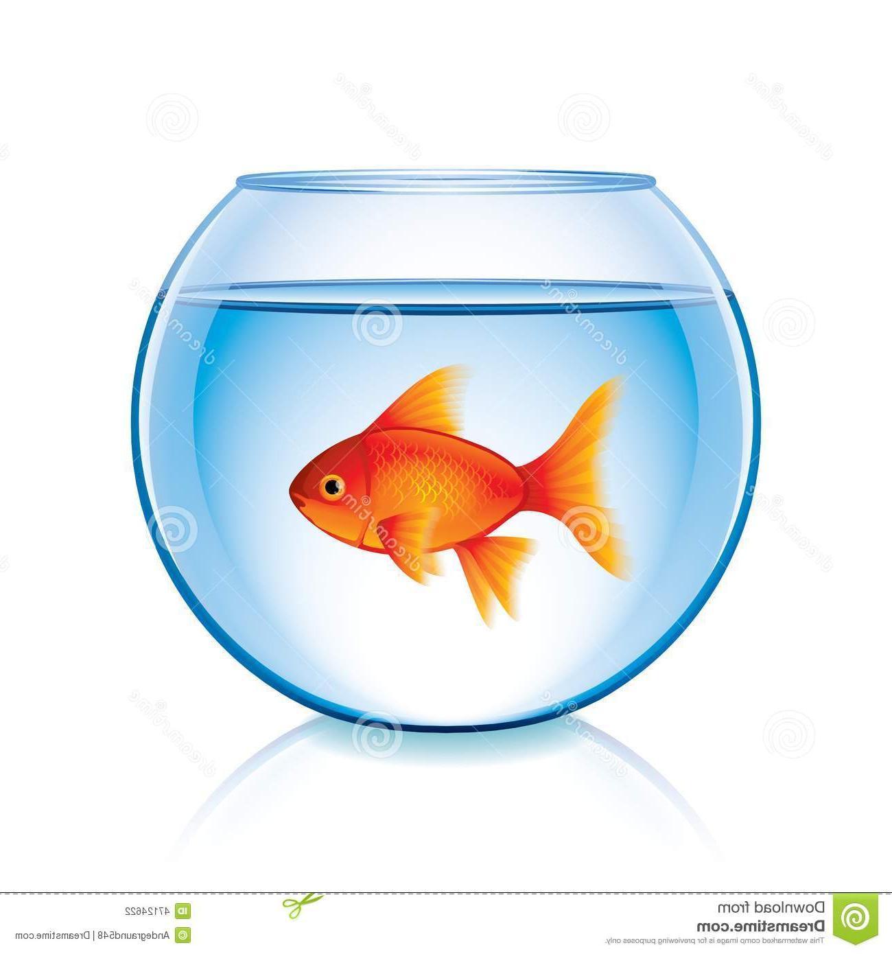 1300x1390 Top Clip Art Fish Bowl Image