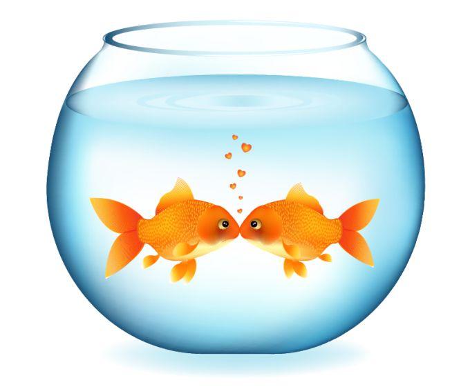 680x564 Fish Bowl Clip Art Clipart Image